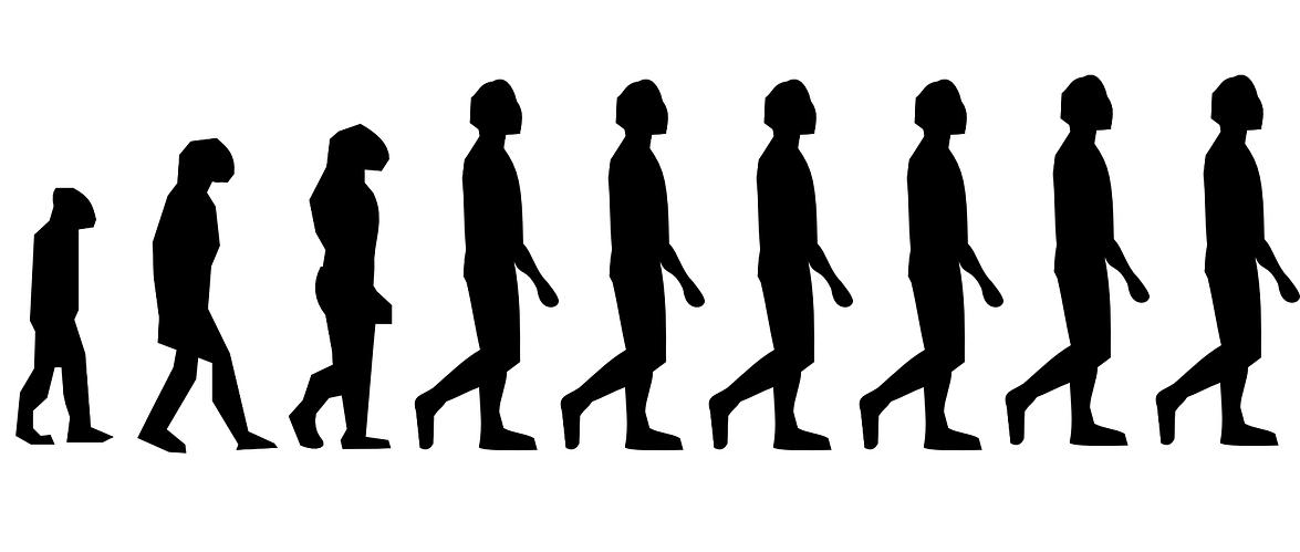 Sapiens and Neanderthals